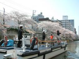 両岸を彩る桜並木、川の水面に広がる桜の花模様。都内でも屈指のお花見スポット・目黒川。