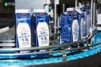牛乳・カップ飲料を作っている森永乳業の東京多摩工場で製造行程を見学♪