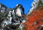 日本屈指の渓谷美の昇仙峡を彩る紅葉はまさに絶景!