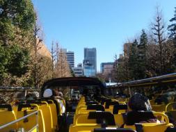 名所をめぐり、東京観光を満喫!