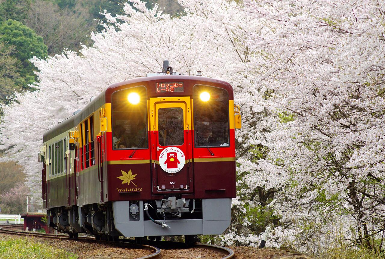 列車 予約 トロッコ