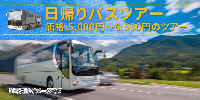 ツアー 日帰り バス